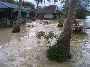 Koh-Phangan-Thailand-0_CIMG0060